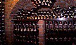 Mes bons vins: faire les bons choix dans les vins millésimés.