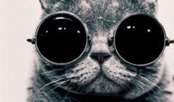 Maintenant, j'apprécie de porter des lunettes